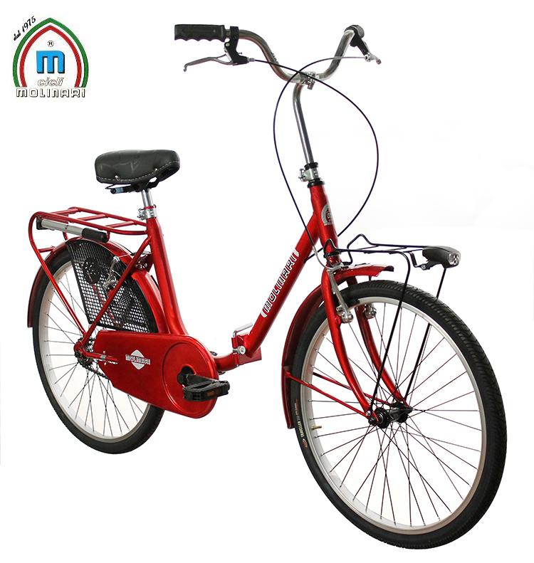 Bici Ciclo Bicicletta Folding Carbike Baule Pieghevole Graziella