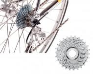 Pignone Bici Corsa Vintage CENTAUR UD 10 Velocità